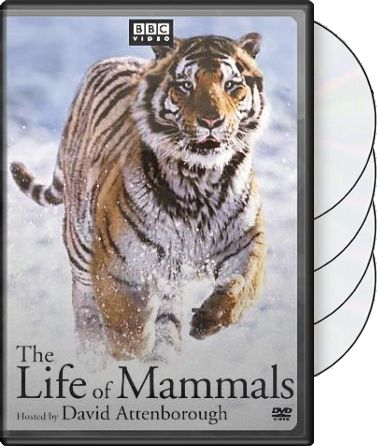 Life of Mammals - Complete Set (4-DVD)
