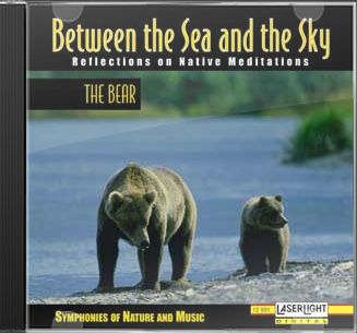 Between The Sea & The Sky: Bear