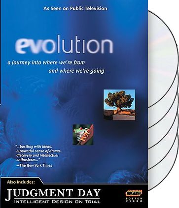 Evolution - Evolution and Judgement Day -