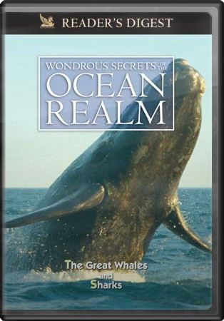 Wondrous Secrets of the Ocean Realm: The Great