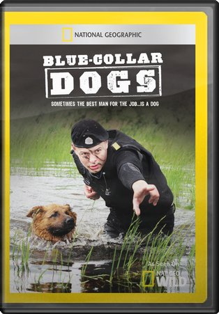 Blue Collar Dogs