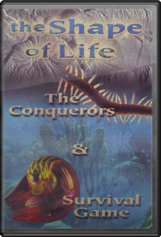 The Shape of Life - The Conquerors / Survival Game