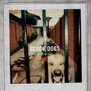 Black Dogs (Coke Bottle Clear Vinyl)