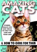 Amazing Cats & How To Care For Them