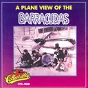 Plane View of The Barracudas