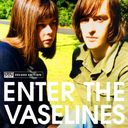 Enter The Vaselines (3-LP)