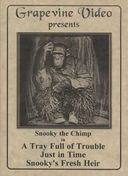 Snooky the Chimp, 1920-1921 (A Tray Full of