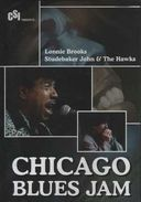 Lonnie Brooks / Studebaker John & The Hawks -