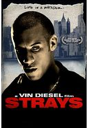 Strays (Limited Edition - Steelbook Packaging)