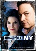 CSI: New York - Complete 7th Season (6-DVD)
