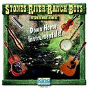 Down Home Instrumentals, Volume 1