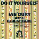 Do It Yourself [Bonus CD] (2-CD)