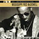 An Introduction to Mississippi Fred McDowell