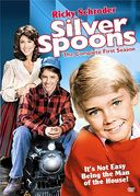 Silver Spoons - Complete 1st Season (3-DVD)