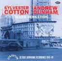 Blues Sensation: Detroit Downhome Recordings