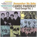 Remember Me Baby: Cameo Parkway Vocal Groups,