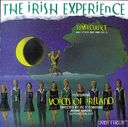Riverdance And Other Jigs & Reels