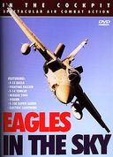 Aviation - In the Cockpit: Eagles in the Sky