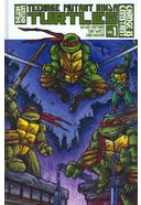 Teenage Mutant Ninja Turtles 1: Change Is Constant