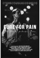 Cure for Pain: The Mark Sandman Story (2-DVD)
