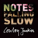 Notes Falling Slow (4-CD)