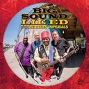 The Big Sound of Lil' Ed & the Blues Imperials