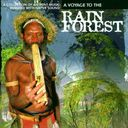 A Voyage to the Rain Forest