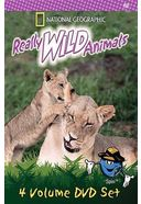 Really Wild Animals Collection (4-DVD)