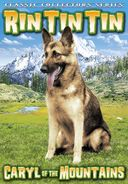 Rin Tin Tin - Caryl of The Mountains
