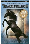 The Adventures of Black Stallion - Complete