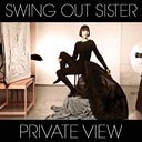 Private View (CD + DVD)