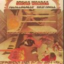 Fulfillingness' First Finale (Remastered)