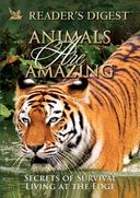 Animals Are Amazing: Secrets of Survival/Living