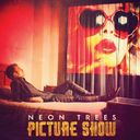 Picture Show (2-LPs)