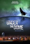 Under the Dome - Season 3 (4-DVD)
