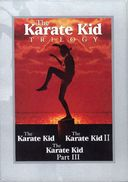 Karate Kid Trilogy (3-DVD)