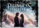 Princess Bride - Storybook Love Pillow Case