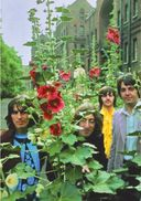 The Beatles - Mad Day Out: Post Card