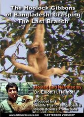 The Hoolock Gibbons of Bangladesh: Grasping the