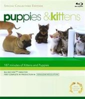 Puppies & Kittens (Blu-ray)