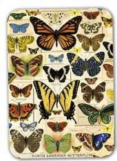 "North American Butterflies - 7"" x 5"" Melanine Tray"