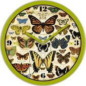 North American Butterflies - Clock