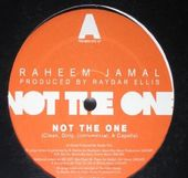 "Not the One / We Got / 33 (12"")"