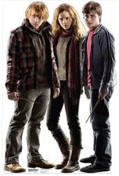 Harry Potter - Hermoine, Ron and Harry - Life