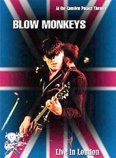 The Blow Monkeys - Live in London