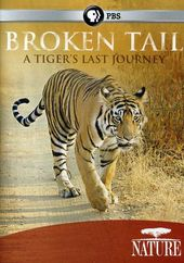 Nature: Broken Tail - A Tiger's Last Journey