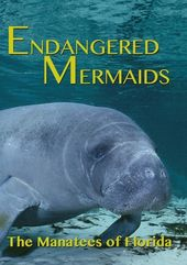 Endangered Mermaids: The Manatees of Florida