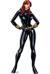Marvel - The Avengers - Black Widow - Cardboard