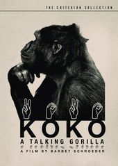 Koko - A Talking Gorilla (The Criterion