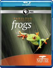 Nature: Fabulous Frogs (Blu-ray)